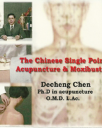 3._The_Chinese_Single_Point_Acupuncture_(Englsih)--VCD